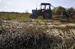 Россия хочет привлечь инвестиции Китая в сельское хозяйство