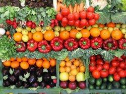 Россия и Китай создают совместное производство экологичной сельхозпродукции