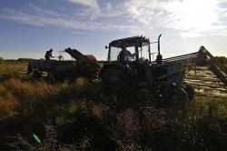 РФ присоединилась к соглашению о создании Международного фонда сельхозразвития