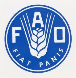 ФАО оценило вклад России в обеспечение продовольственной безопасности
