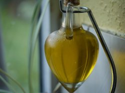 Первый в России завод по производству белкового концентрата из масличных культур откроется на Алтае