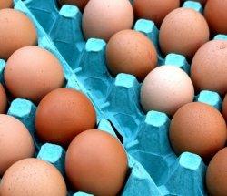 Россия будет экспортировать мясо и яйца в Анголу
