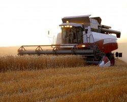 Правительство РФ будет добиваться приемлемой кредитной ставки для российских сельхозпроизводителей
