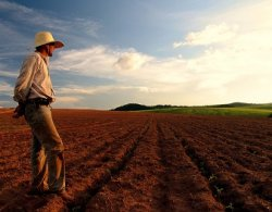 Датские объединения аграриев предостерегли фермеров от общения с российскими журналистами