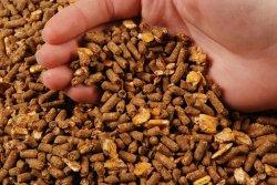 Ученые отмечают глобальный сдвиг в сторону отказа от использования кормовых антибиотиков