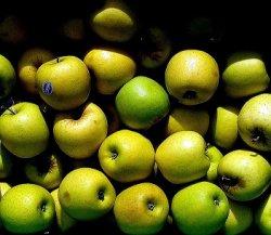Холодильники в Польше переполнены яблоками из-за российского эмбарго