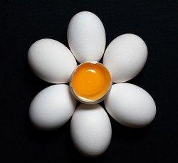 Химики нашли способ делать вареные яйца снова сырыми