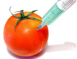 Ученые разработали методику защиты от ГМО