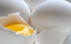 Европейский сектор производства яйца под угрозой свободной торговли