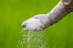 Вопрос о введении экспортных пошлин на удобрения закрыт: производители достигли договоренностей