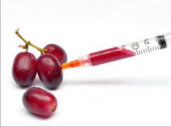 Новый закон о ГМО в Европе