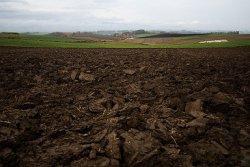 Почти треть пахотной земли в ДНР заминирована