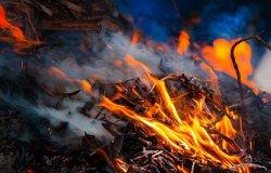 При пожарах в Хакасии уничтожено около 4 тыс. голов скота и сотни тонн зерна