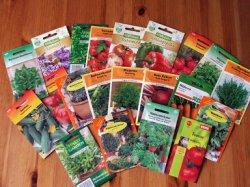 Россияне стали активнее покупать семена овощей вместо цветов