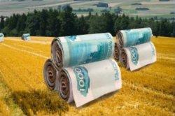 """Злободневные вопросы аграрной отрасли в программе """"Агробизнес"""""""