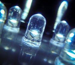 Cветодиодное освещение не вредит здоровью бройлеров