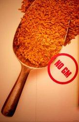ЕС защитит рынки от американских ГМО