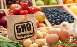 Утвержден национальный стандарт «Продукция органического производства»