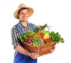 Мечта отечественного производителя сельхозпродукции сбылась — продовольственное эмбарго продлили