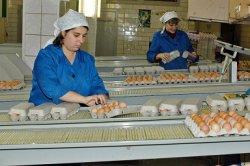 Конкурентоспособность российских производителей улучшается
