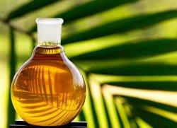 Эксперты: «Запрет использования пальмового масла выведет из тени псевдомолочную продукцию»