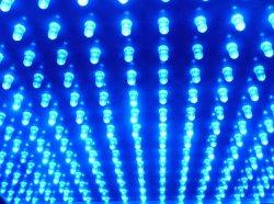 Синие светодиоды помогут хранить продукты питания