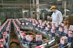 Импортозамещение в России работает только в пищевой промышленности