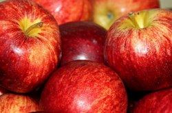 Российские производители подняли цены на яблоки в 2,5 раза